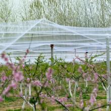 Птичья сетка садов удерживает птиц от вредителей