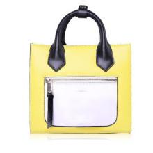 Combinaison de couleur Fashion Lady Handbag (WZX23435)