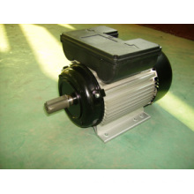 Yl Single-Phase Capacitor Start Induction Electrical Motor (YL90L-2)