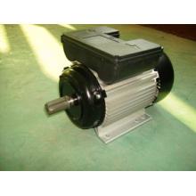 Motor eléctrico monofásico de Yl (YL90L2)