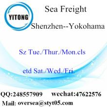 Shenzhen Port LCL củng cố đến Yokohama