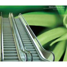Escaleras mecánicas de Shandong Fjzy Brand