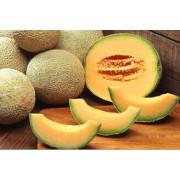 Hami Melon Fruit Juice Powder