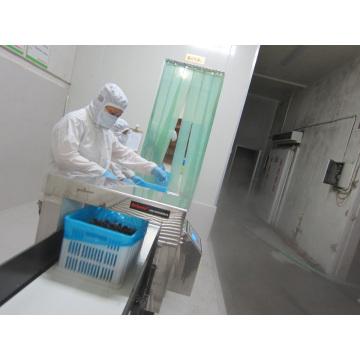 IQF Congelación de arándanos orgánicos Zl-1026 1
