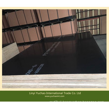 F17 Grade 1200X2400X17mm Black Film Faced Plywood