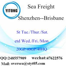 Puerto de Shenzhen, carga de mar, envío a Brisbane