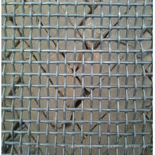 Stainless Steel Crimped Wire Mesh for Headlight Stone Guard