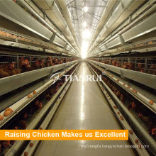 Tianrui design low price automatic battery cages for layers for Bengal