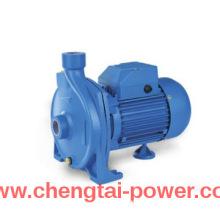 1 Inch CPM Centrifugal Domestic Water Pump 1HP Motor Pump