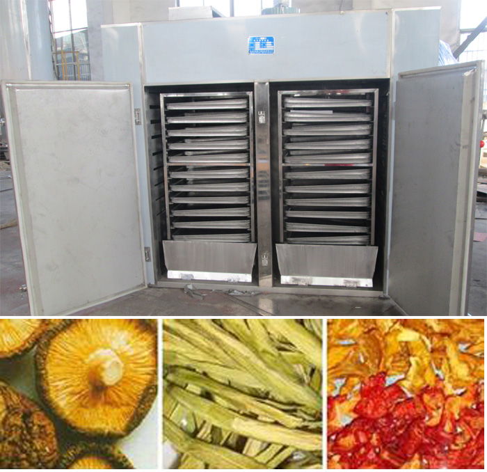 Fish Dehydrating Machine