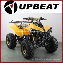 Motociclista ATV de 110cc / 125cc