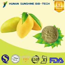 Instant mango powder / mango powder/ instant fruit juice powder 100% Nuture