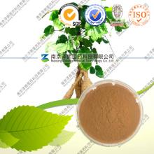 Pueraria Mirifica Wurzelextrakt Pueraria Flavones 80%