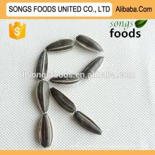 Семена подсолнечника в скорлупе