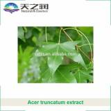 Acer Truncatum Kernel extract nervonic acid