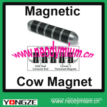 Magnetic Cow Magnet