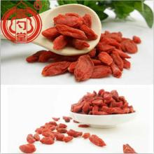 Bayas secas de fruta roja Goji Berries Superfood