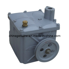Zcheng Gear Pump for Fuel Dispenser Zcp-68