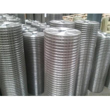 Hot Selling Welded Wire Mesh