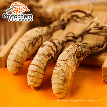 Professional manufacture cordyceps sinensis extract powder for anti-aging