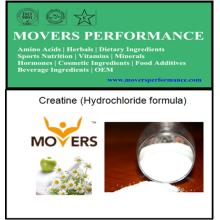 Meilleure créatine d'OEM (formule de chlorhydrate)