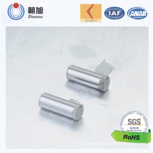 Custom Design Solid Rivet with High Quality