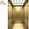 Gearless Permanent Magnet Synchronous Home Elevator