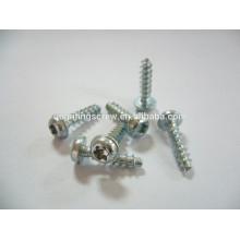 Pan head torx coarse thread self tapping screw