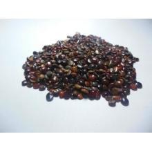 La planta extrae extracto de semilla de árbol de pasas de uva