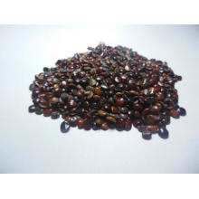 Plant Extracts Raisin Tree Seed Extract