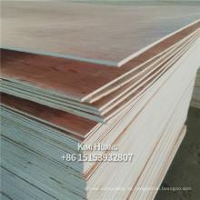 1220x2440 chapa bingtangor frente a madera de abedul para muebles de madera comercial