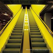 600mm 0.5m / S Escalator extérieur résidentiel bon marché électrique