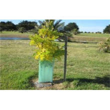 Light Green Corrugated Plastic Tree Guards UV Resistant For