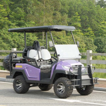 China 48V Battery Power Electric Golf Cart for Sale