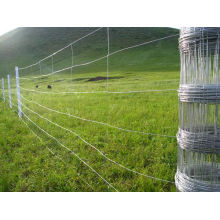 Hot-Dipped Galvanized Knotted Wire Mesh Fence