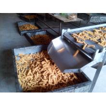 Máquina de comida de lanche indiana máquina de comida filipina