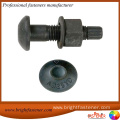 TC bolts/high strength torsion shear bolts with F35 and F10 nuts