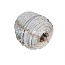 China for White Pp Mixed Rope 6 Strand Mono&Multi Polyamide Rope export to Serbia Manufacturers