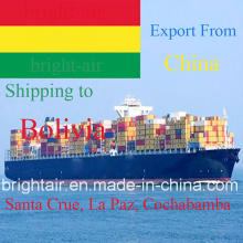 Logistics Service Sea Freight Ocean Cargo Shipping Forwarder From China to Bolivia