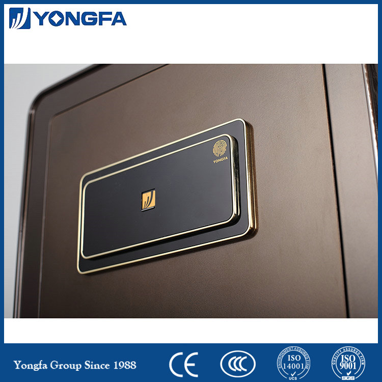 Chinese Biometric Fingerprint Safe