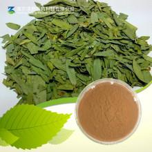 Polvo de Senna Leaf Extract / Sennoside