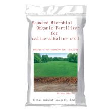 Fertilizante orgânico microbiano de algas marinhas para solo salino-alcalino