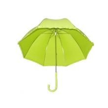 Зонтик рябины детей (BD-15)