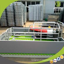 L'équipement de porc pour la ferme de reproduction de porc galvanise la caisse de mise à l'eau de stylo de porc