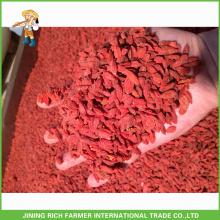 Calidad superior Ningxia secado Goji Berry 180Grains / 50G