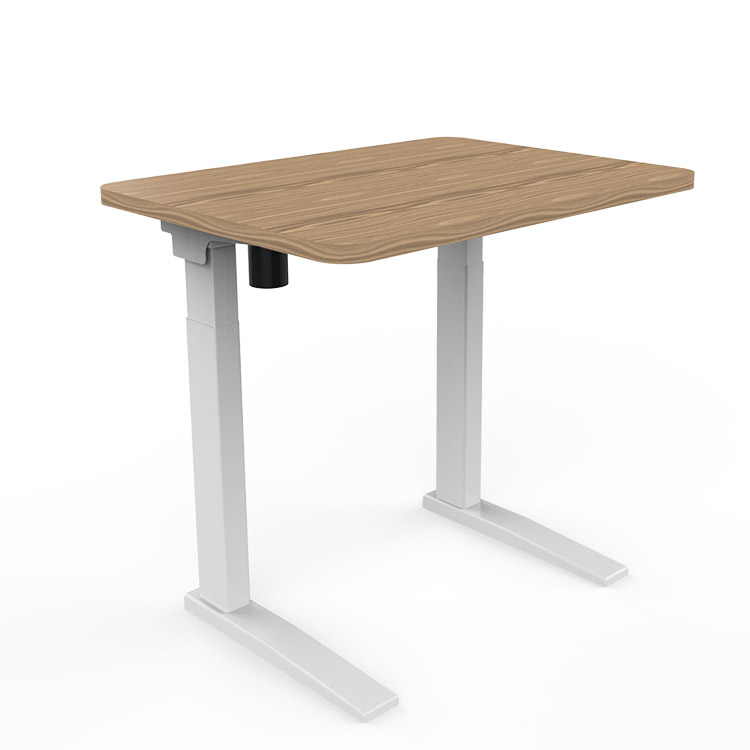 Standing Adjustable Desks