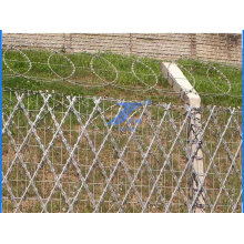 High Security Fence Made in China (TS-W09)