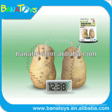 Environmental energy saving and reproducible potato clock