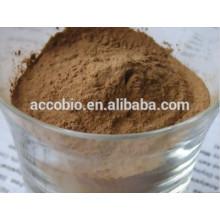 Flammulina Velutipes Extract Powder / cogumelo de agulha dourada, Polissacarídeo10% -30% UV; 10: 1,20: 1
