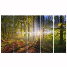 De la pared de la lona de la sol del bosque / pintura al óleo al por mayor del paisaje del otoño / cuadro de la pared del paisaje de la puesta del sol